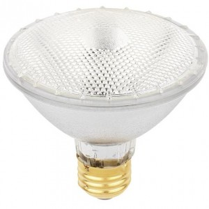 Westinghouse 36845 60W PAR30 Halogen 2900K Warm White Flood 60PAR30/H/FL/ECO