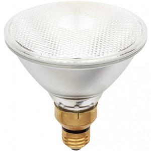 Westinghouse 36839 60W PAR38 Halogen 2850K Warm White Flood 60PAR38/H/FL/ECO/PLUS
